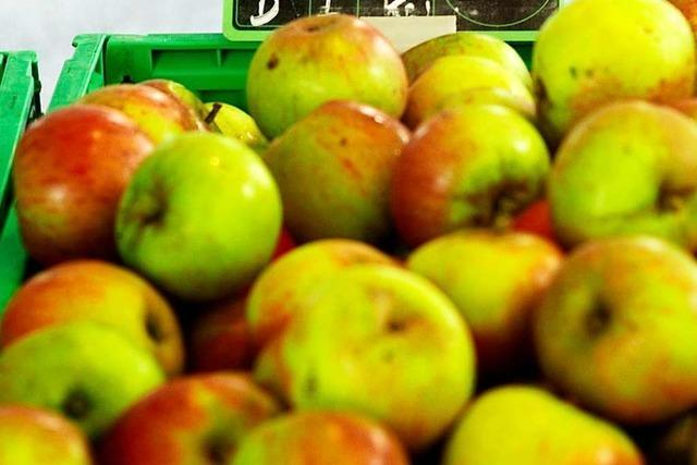 Basler Kantone unterstützen regionale Landwirtschaft mit 6 Millionen Franken