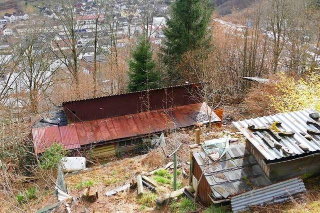 Eine alte Hütte droht in Zell abzustürzen – direkt über der Realschule