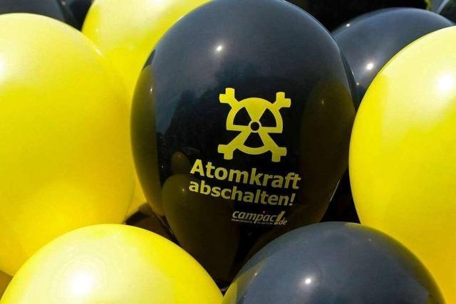 Fotos: Auf 45 Kilometern gegen Atomkraft