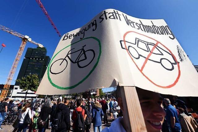 Fridays-for-Future ist in Lörrach nicht nur auf der Straße aktiv