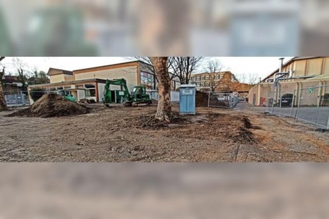 Bauarbeiten am Schulzentrum nehmen Fahrt auf