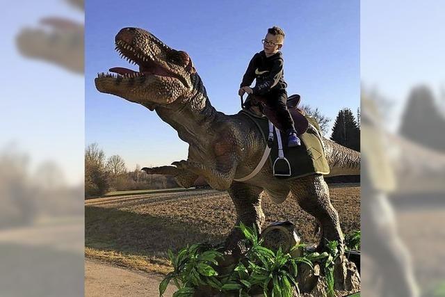 Eintauchen in die Welt der Dinosaurier