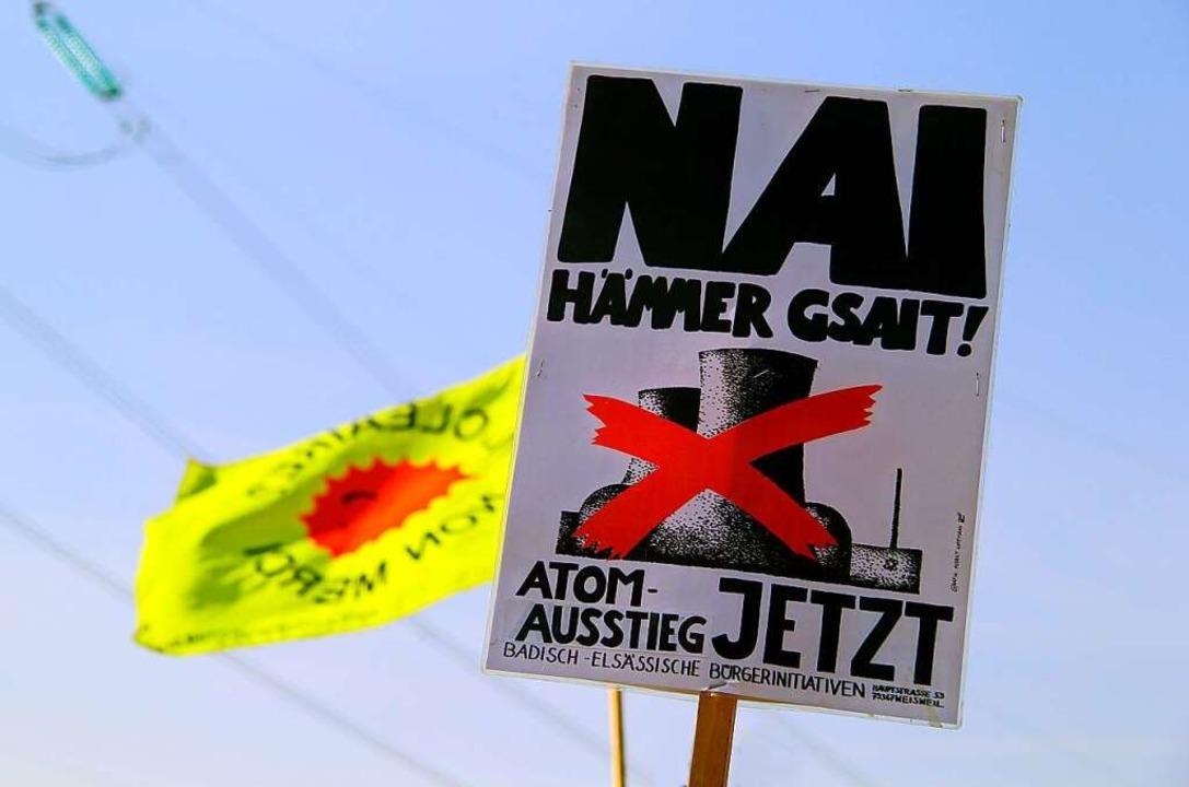 Vereint gegen das AKW: Binationaler Protest in Fessenheim.  | Foto: Patrick Lohmüller