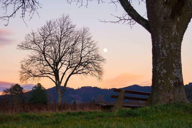 Der Mond im Abendrot bei Kirchzarten