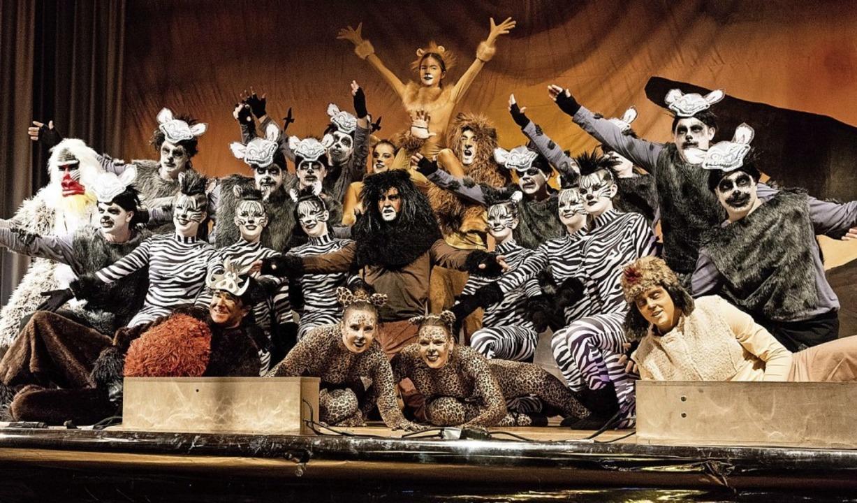 """Die Showtanzgruppe Sexau inszenierte das Musical """"König der Löwen"""".    Foto: Gabriele Zahn"""