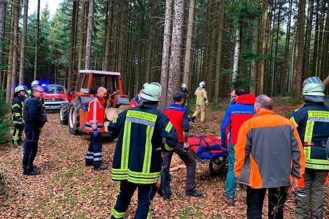 Unfall bei Waldarbeit in Biederbach – Forstarbeiter verletzt