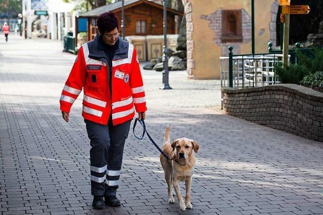 Freiburger Rettungshunde schnüffeln sich im Europa-Park durch Frankreich-Themenbereich