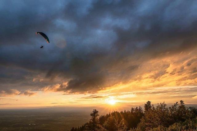 Ein Gleitschirmflieger startet seinen Flug auf dem Hochblauen