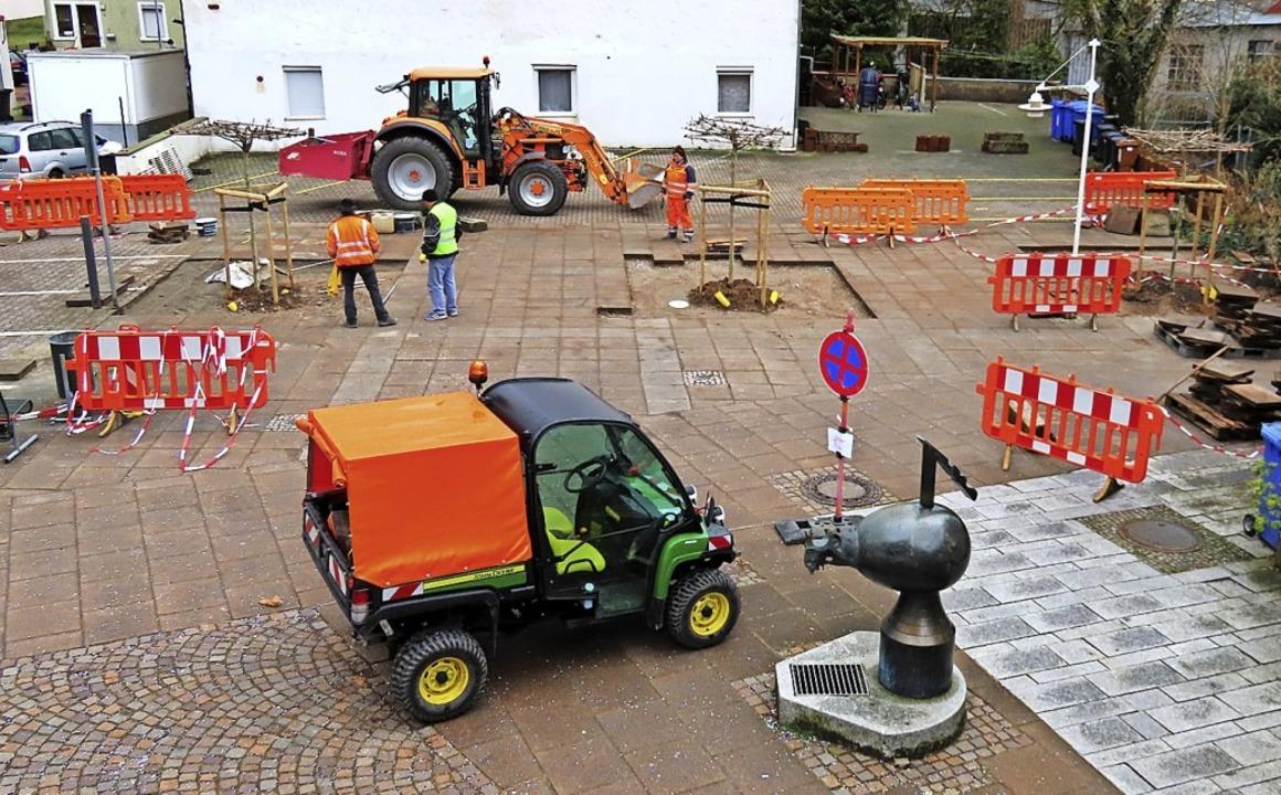 Drei kleine Platanen wurden anstelle d... dem Storchenplatz in Wehr gepflanzt.   | Foto: Gerd Leutenecker