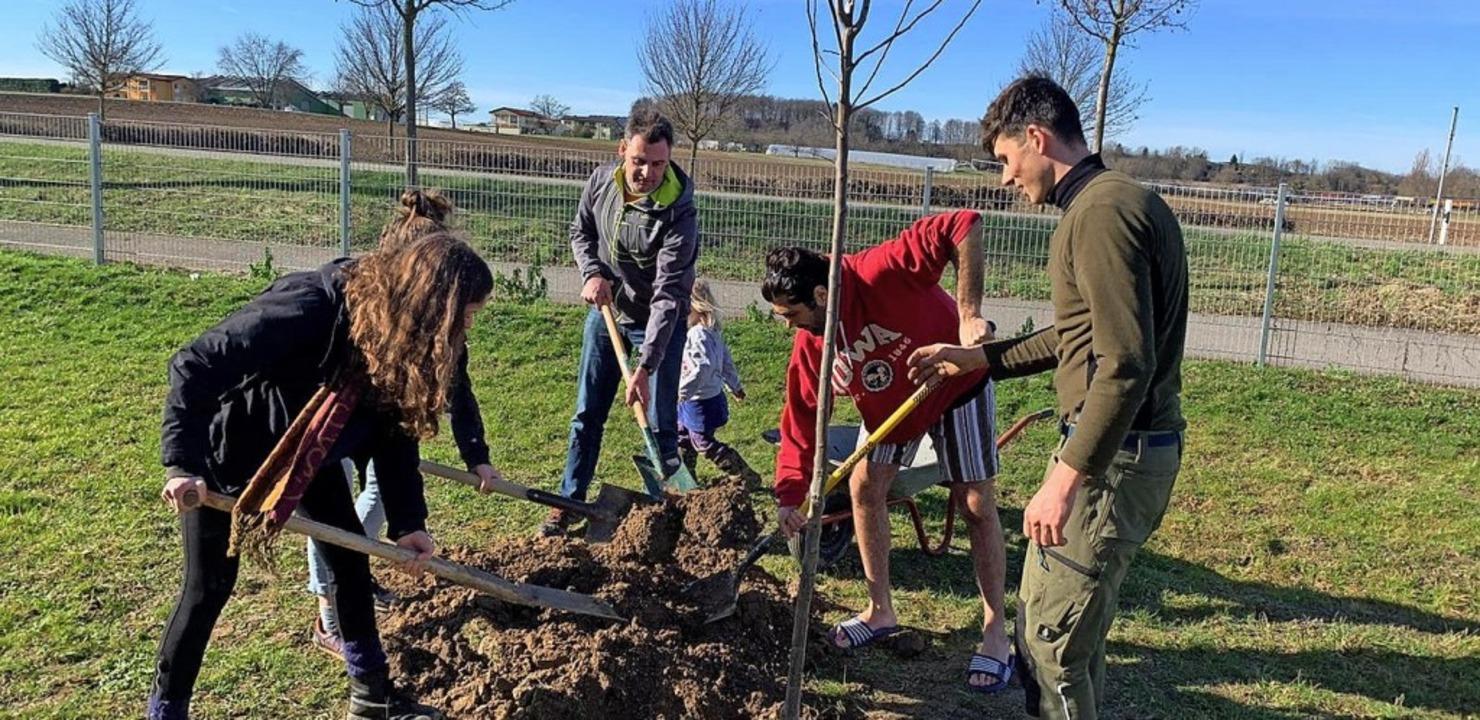 <BZ-FotoAnlauf>Parents for future:</BZ...den 23 Bäume und Sträucher gepflanzt.   | Foto: Parents for future