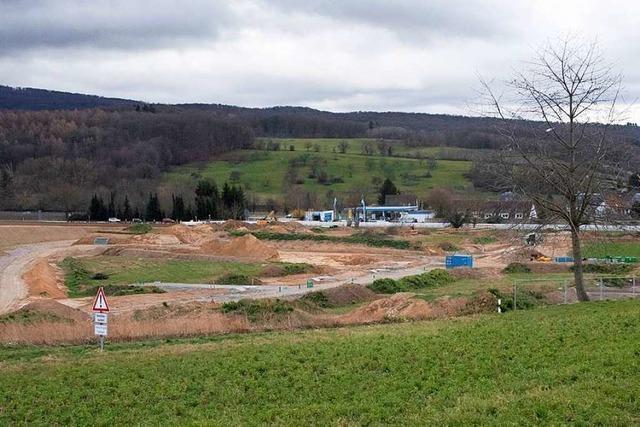 Grüne wollen Kriterien für Grundstückverkauf am
