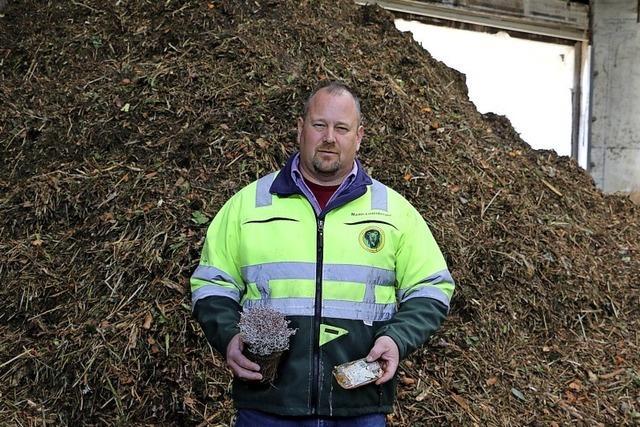 Zu viel Plastik landet im Biomüll