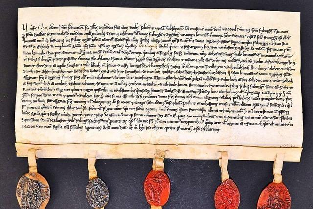Die Dorfgeschichte von Sulz auf 600 spannenden Seiten