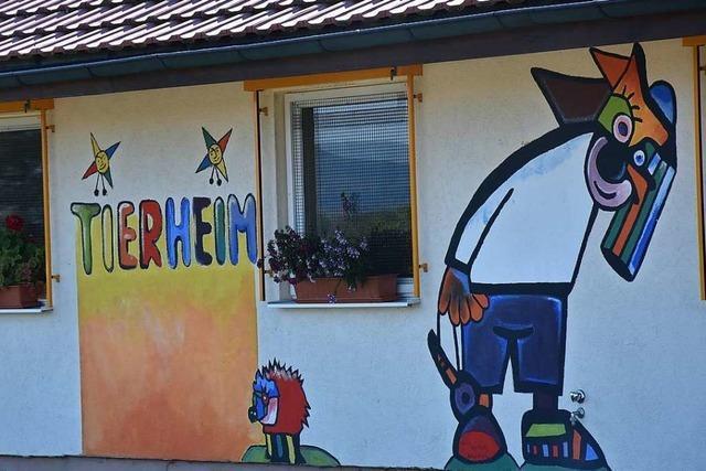 Der Rheinfelder Tierschutzverein wünscht sich ein Böllerverbot beim Tierheim