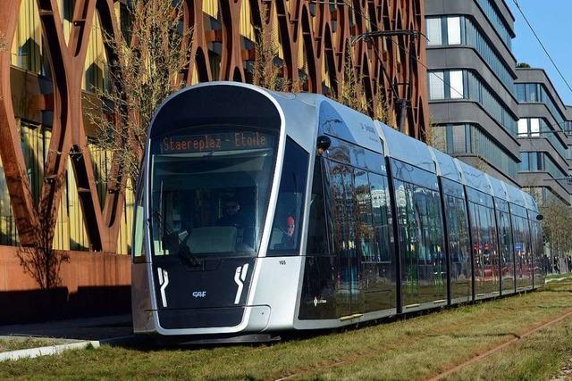 Nachhaltigkeitsexperte hält kostenlosen Nahverkehr in Deutschland für möglich