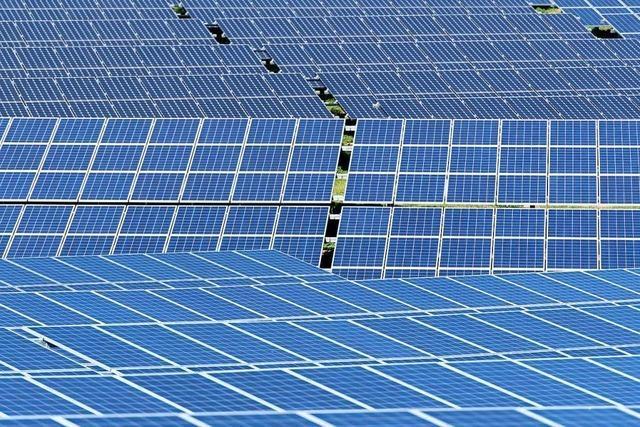 Ihringen lehnt Solarenergie-Testfeld in Merdingen ab