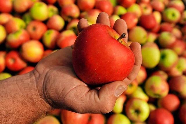 Reicht es, einen Apfel an der Kleidung zu reiben, um ihn zu reinigen?