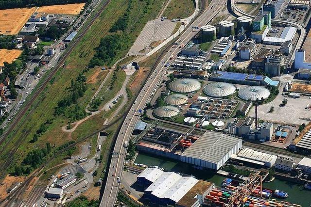Warum wehrt sich Pro Natura gegen die Erweiterung des Hafens in Basel?
