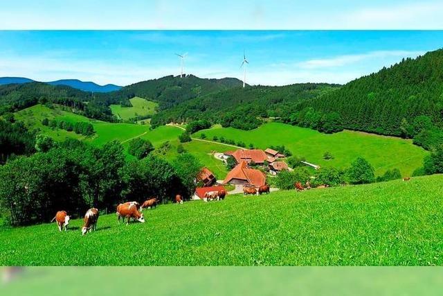 90 Jahre Schwarzwaldmilch – eine echte Erfolgsgeschichte