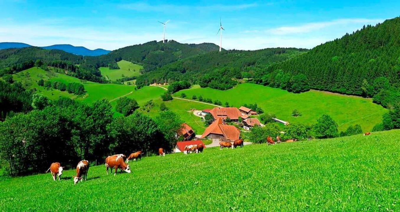 | Foto: Schwarzwaldmilch GmbH