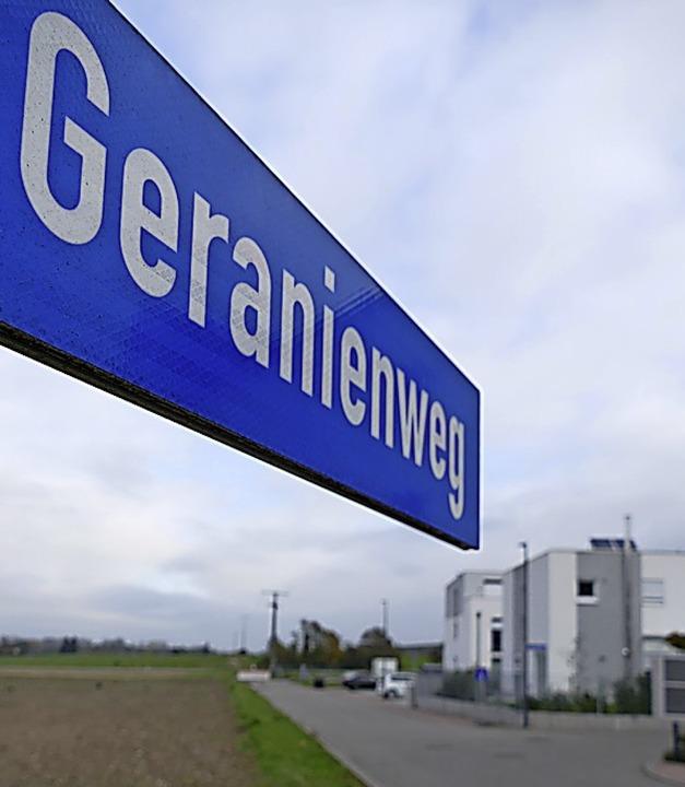 Am Geranienweg soll eine der neuen Kitas entstehen.  | Foto: Frank Schoch