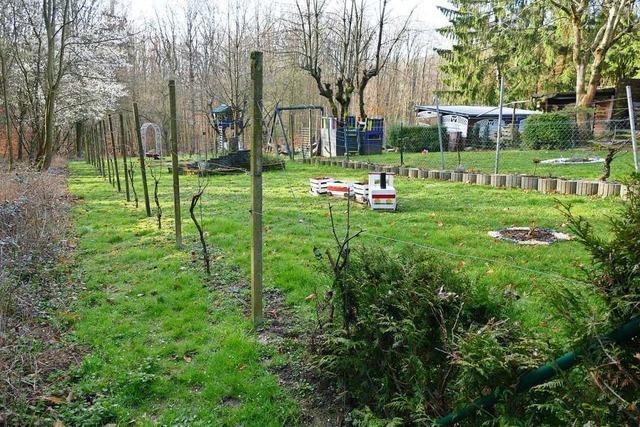 Darf eine Privatperson mitten im Wald einen Zaun bauen?