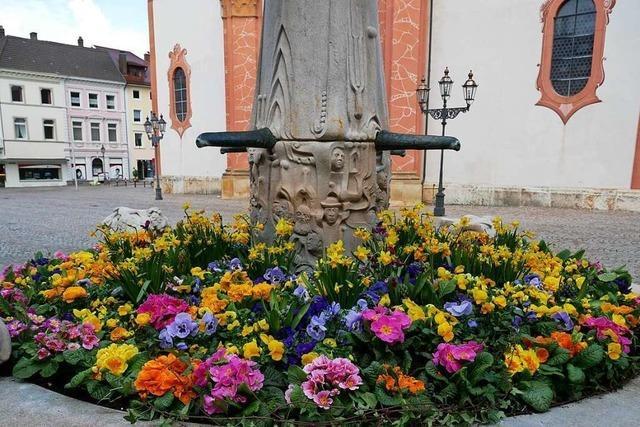 So schön blühen die Brunnen in Bad Säckingen