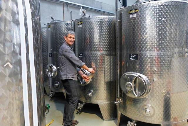 Weingut Herbster ist innerhalb Ehrenkirchens umgezogen