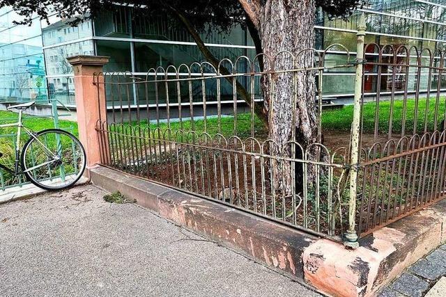 Bei der Fasnet beschädigter, historischer Zaun in Herdern steht wieder