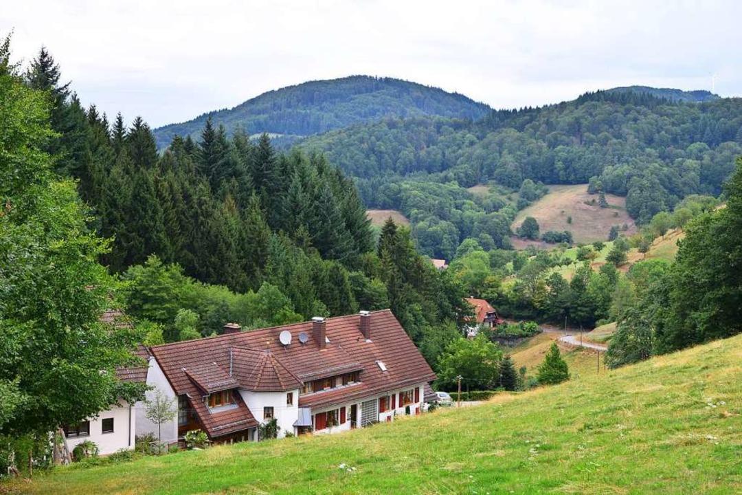 Die Linde liegt versteckt in Obersexau  | Foto: Reinhold Wagner