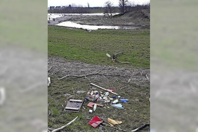 Müll am Ufer der Elz