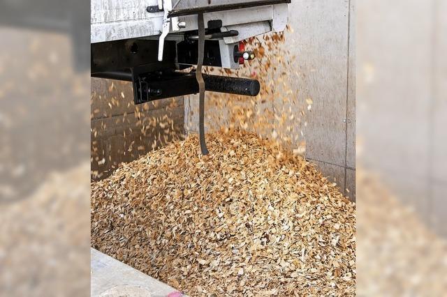 11 000 Festmeter Holz liegen am Boden