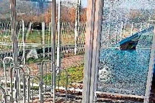 Vandalen verursachen vierstelligen Sachschaden in Schopfheim West