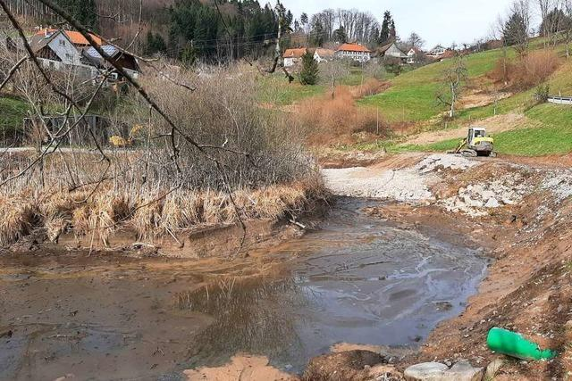 Löschweiher in Malsburg-Marzell ist wieder auf dem Weg, ein Biotop zu werden
