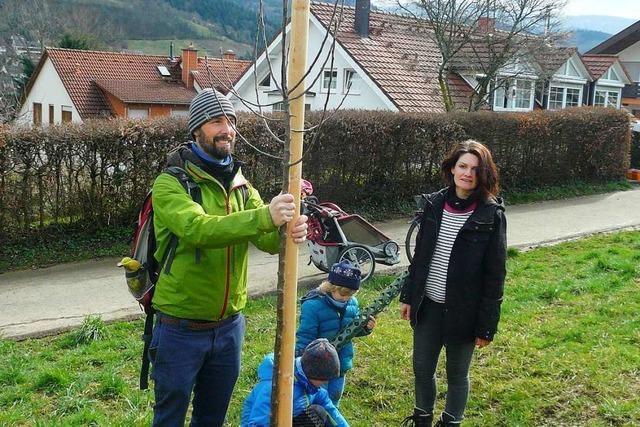 In Merzhausen pflanzen Kinder Bäume für die Zukunft