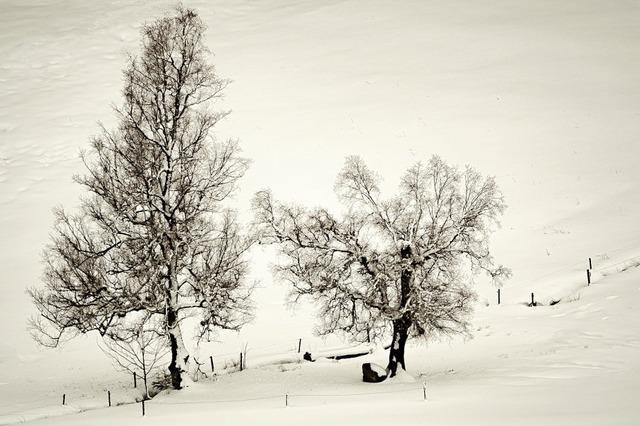 Winterliches Gastspiel