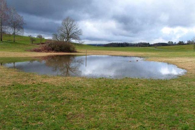 Der Eichener See ist wieder mit Wasser gefüllt