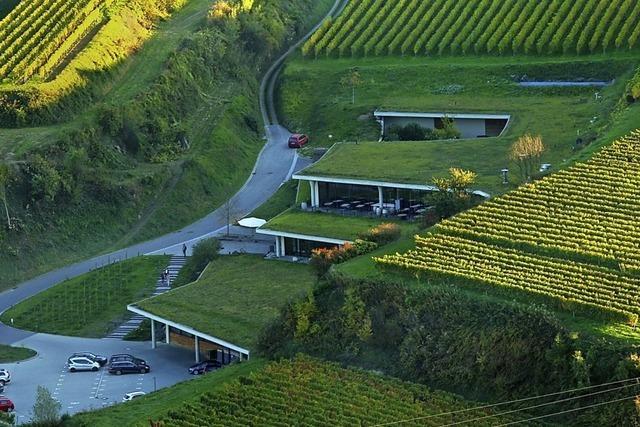 Preis für Kellers Weingut