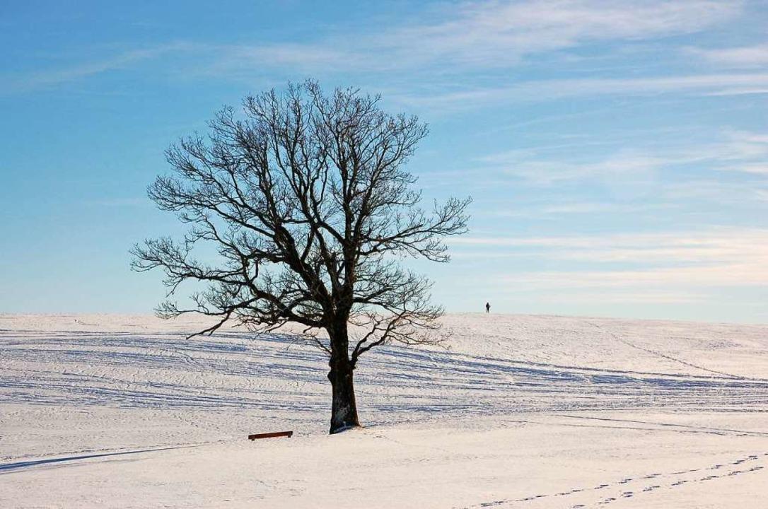 Auf eine  Gersbacher Winterwunderwelt ...tersportler in diesem Jahr vergeblich.  | Foto: Angelika Schmidt