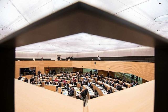 Corona: Landtag tagt gegen Willen der Grünen