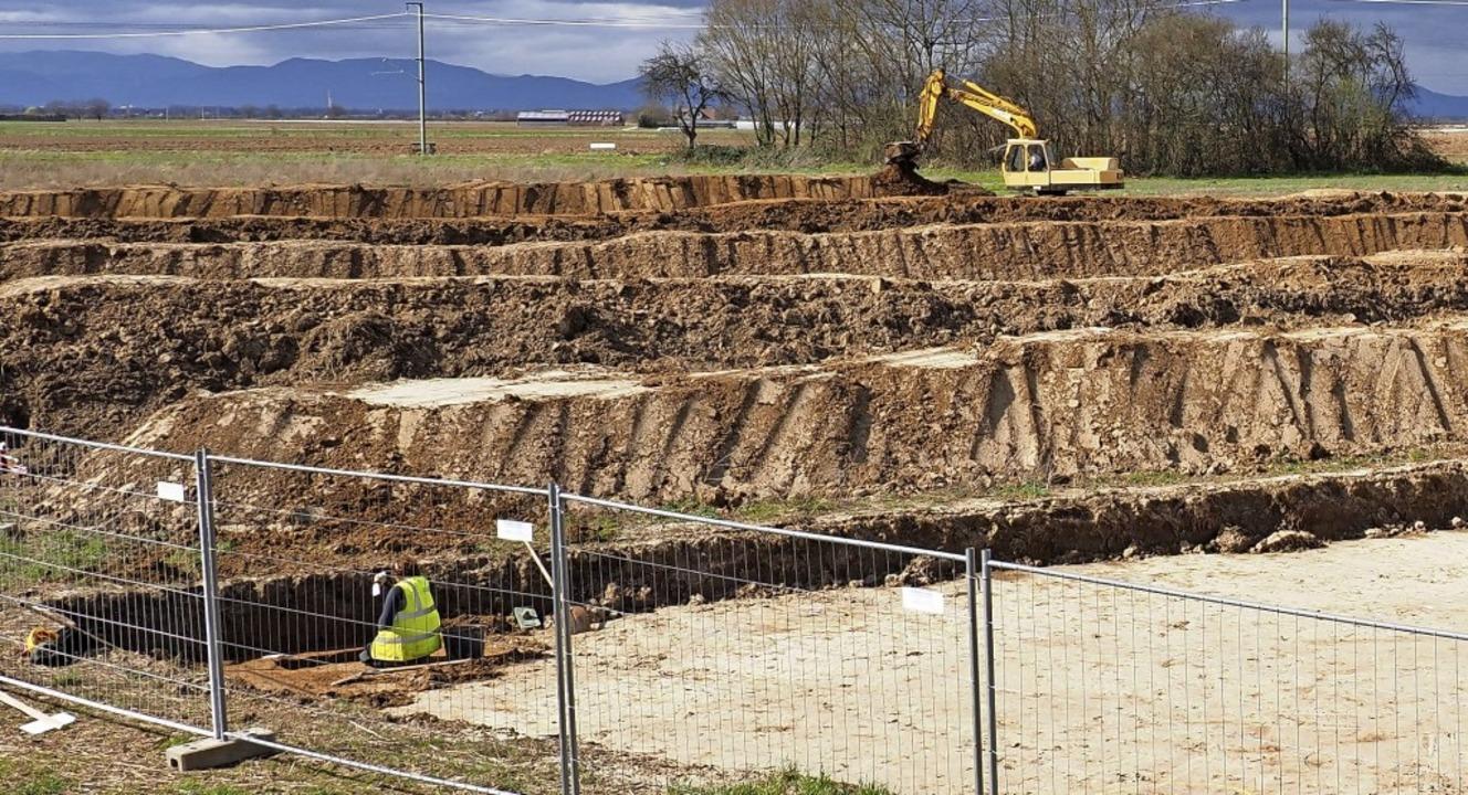 Aufwändige archäologische Arbeiten lau...zeit im Bereich Breite III in Riegel.     Foto: Michael Haberer
