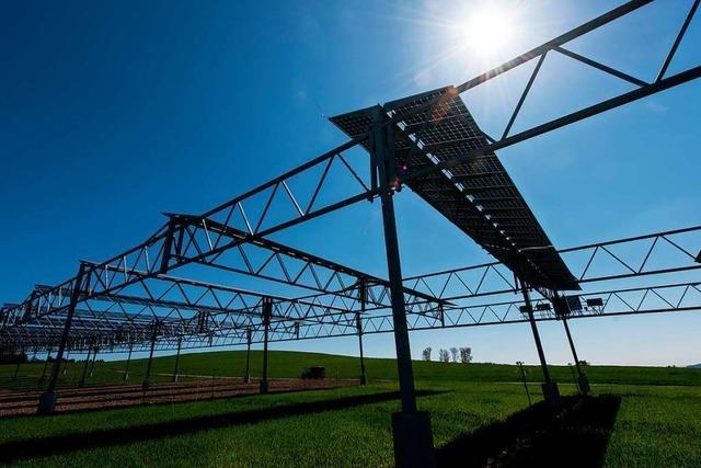 Solarstrom vom Acker: Doppelte Ernte auf knappen Flächen