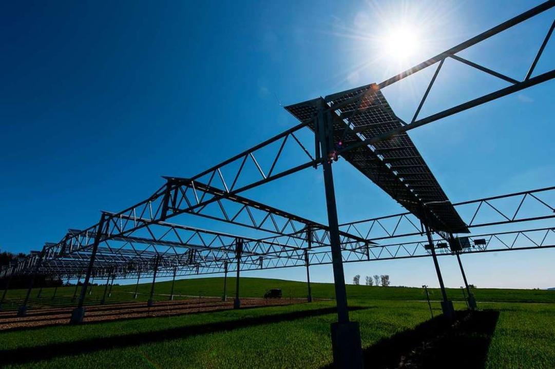 Die Solarmodule werden in fünf Metern ...d darunter noch bestellt werden kann.   | Foto: Patrick Seeger