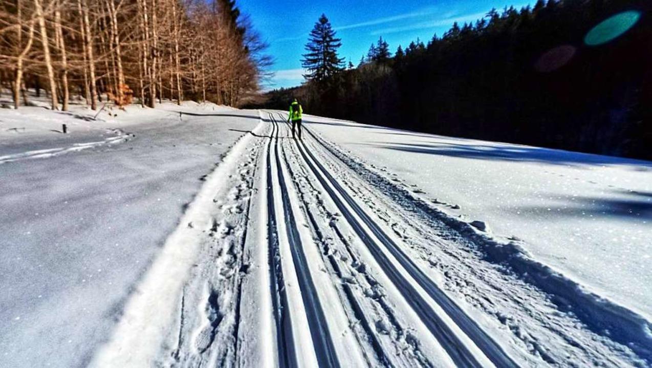 Loipe im Schwarzwald  | Foto: Anselm Bußhoff