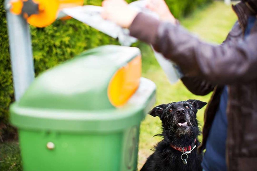 Nicht bei allen Beutelspendern ist auch direkt ein Mülleimer angebracht.    Foto: lightpoet - stock.adobe.com