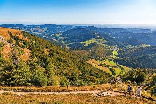 Die Schwarzwaldregion Belchen liegt im Trend