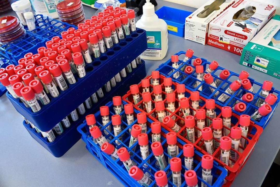 Ein Drittel der Mitarbeitenden ist nur mit Coronavirus-Tests beschäftigt.  | Foto: Thomas Kunz