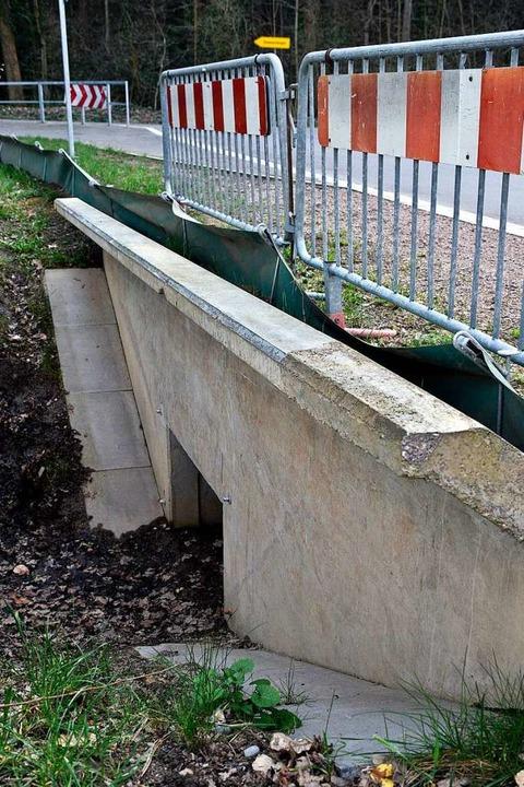 Die eigens gebauten  Krötentunnel unte...straße nutzen die Tiere bislang nicht.  | Foto: Thomas Kunz