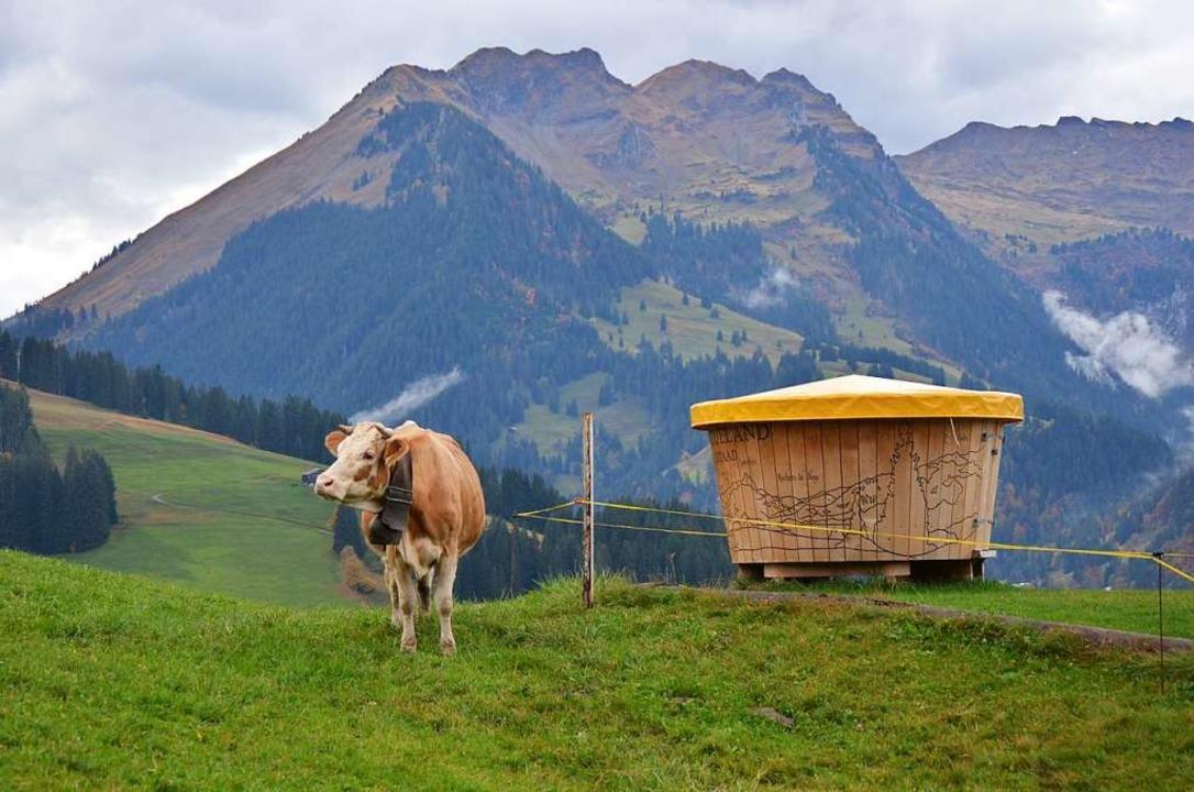 Neben dem Tourismus ist die Milchviehw...haft Teil der Identität im Saanenland.  | Foto: Ulrike Ott