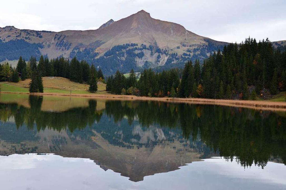 Abseits des Trubels ist das Saanenland...geregt ruhig. Ein Bild vom Lauenensee.  | Foto: Ulrike Ott